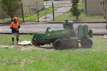 Find the best stump grinding service in Miranda