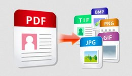 Convert pdf to image/text in C#