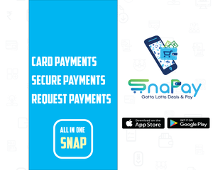 Credit Card Amount Transfer to Bank Account | Snapay.in