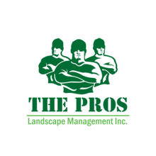 Landscaping Construction Project